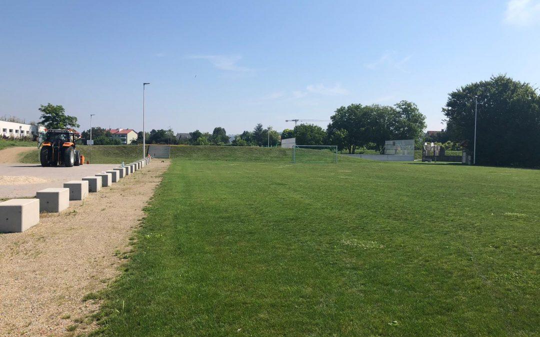 Rasenfläche im Freizeitpark – notwendiger Frühjahrsputz